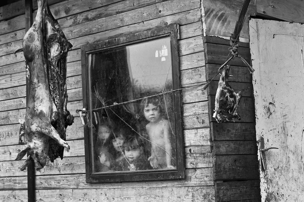 Armenians in russia - 1 10